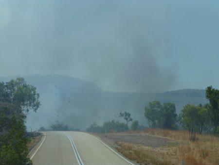 Bosbrandjes in het hete Noorden
