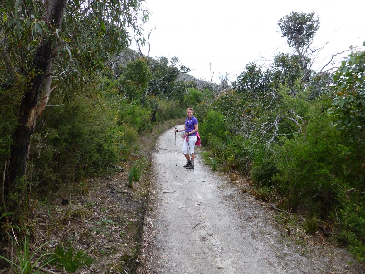 Lilly Pilly Gully in Wilsons Promontory