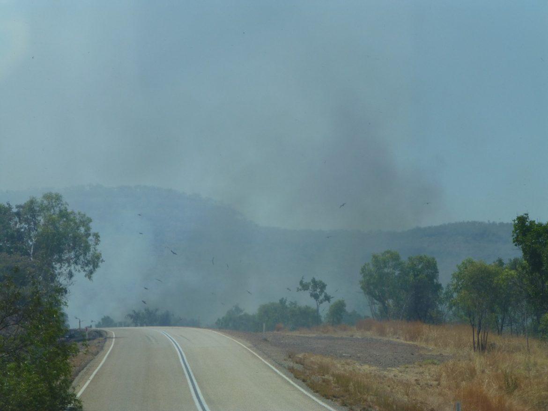 bosbranden Noord Australië