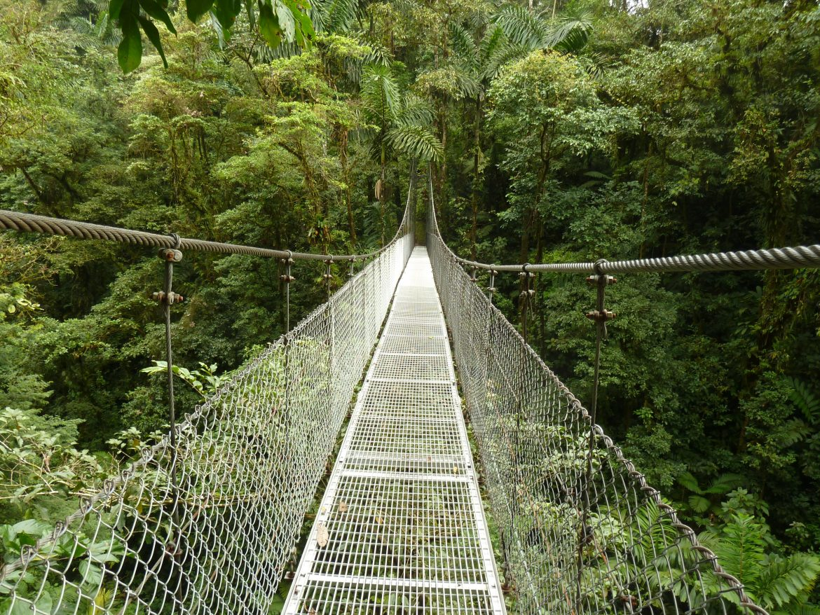 Costa Rica jungle hangbrug