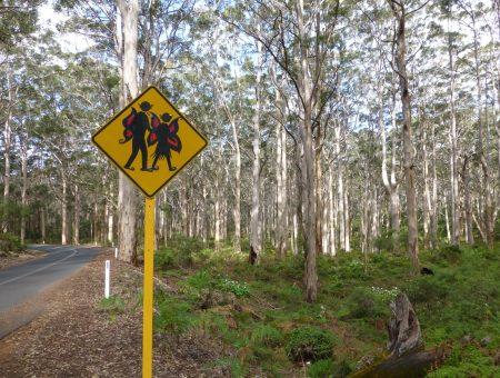 Een sprookjesbos in zuidwest Australië